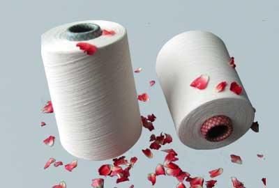 涤棉纱价格